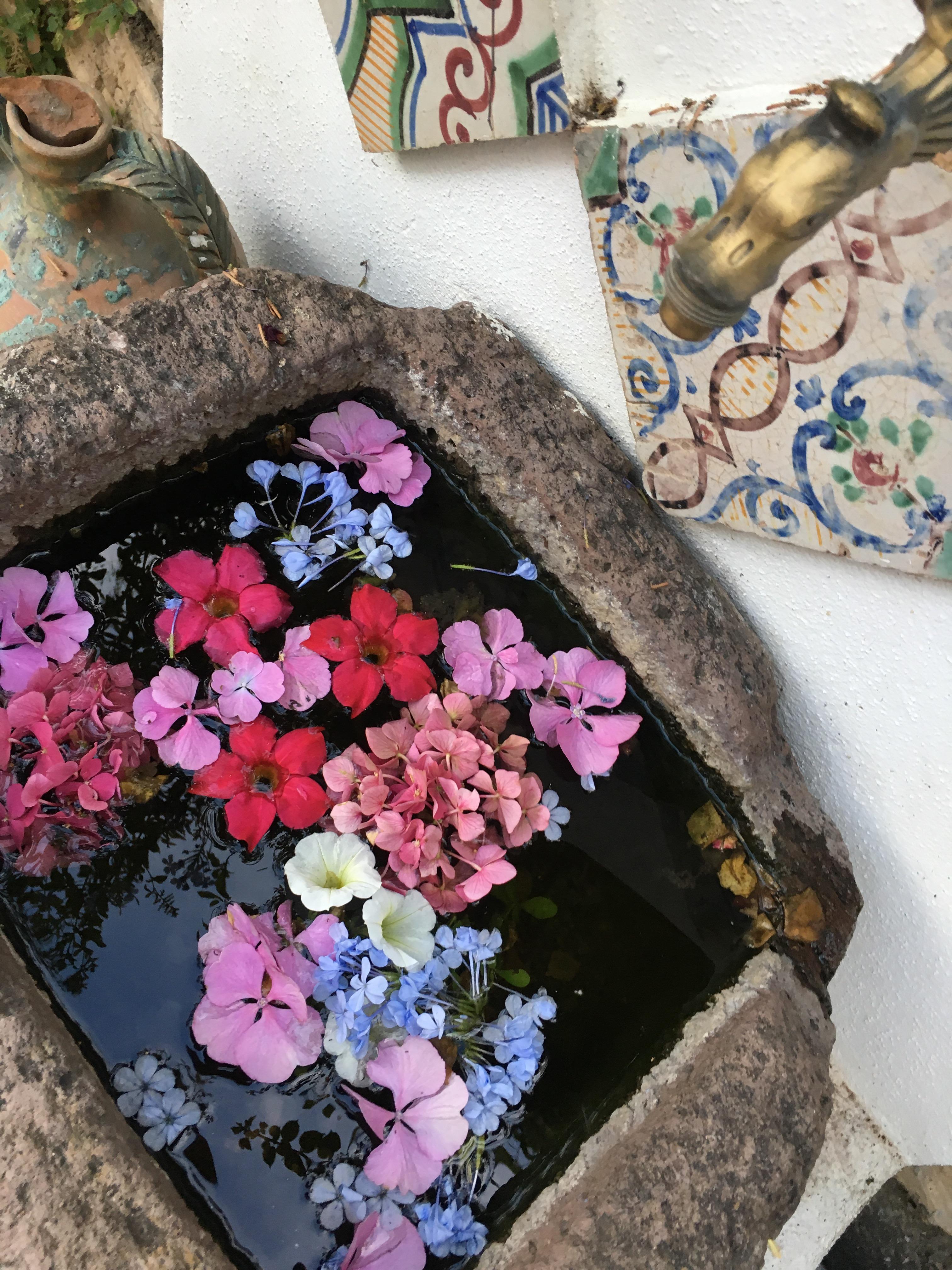 Su Gologone: un viaggio dei sensi alla scoperta della vera Sardegna